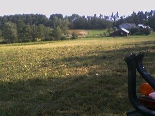 Grassmasters Landscaping Brush Hogging Project 1