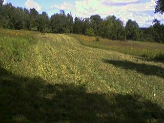 Grassmasters Landscaping Brush Hogging Project 2