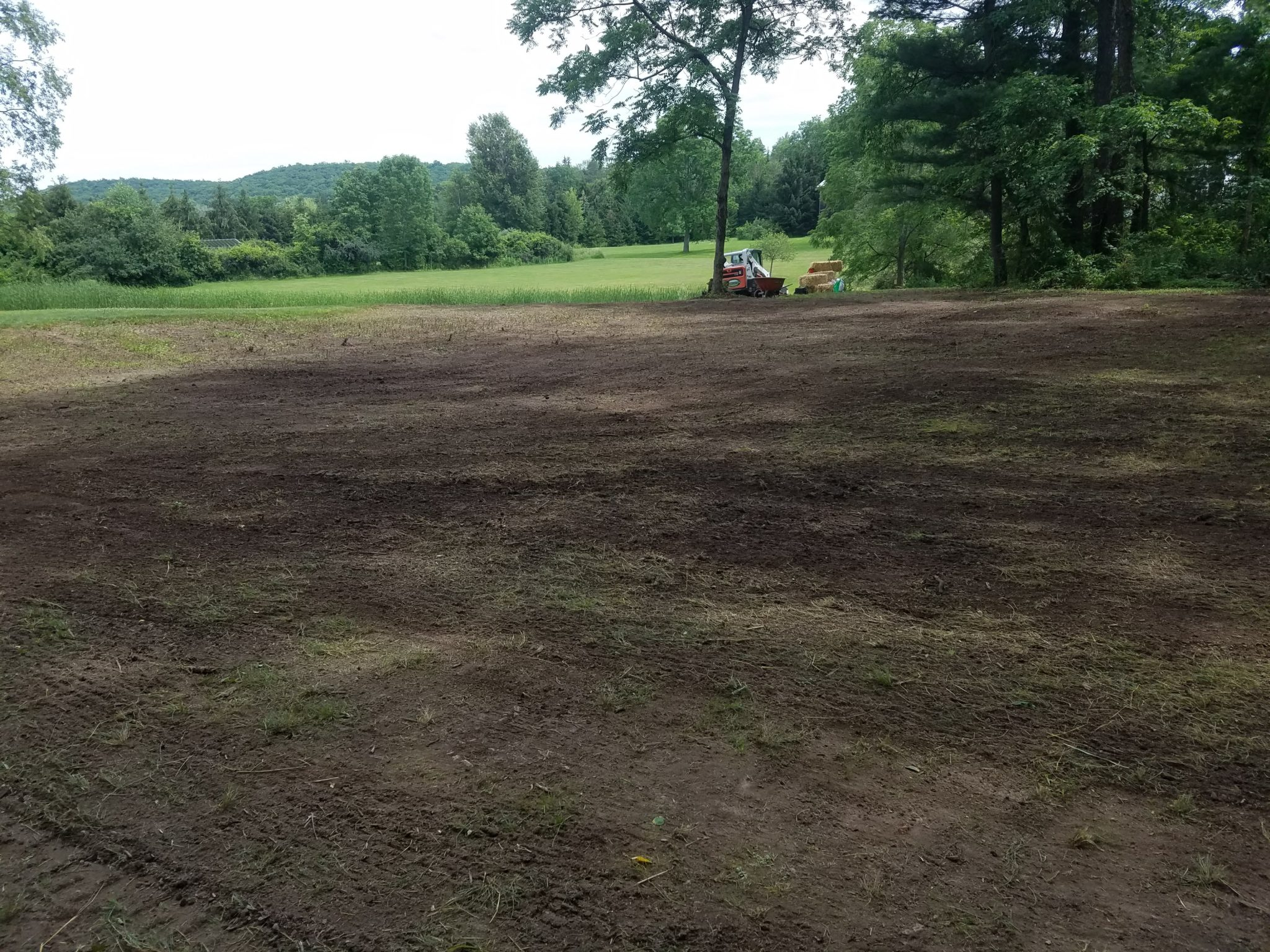 GrassMasters Landscaping New Lawn Installation Project