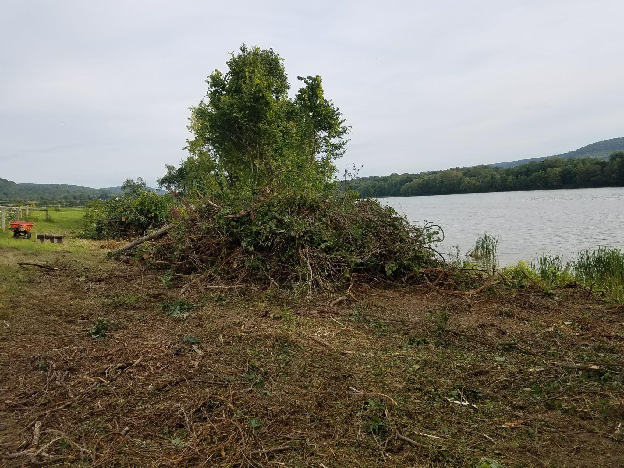 GrassMasters Landscaping Hauling Brush Pile