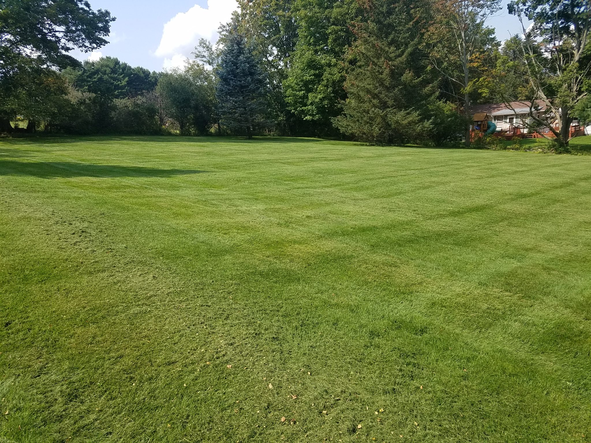 Grassmaster Landscaping Lawn Maintenance Projects