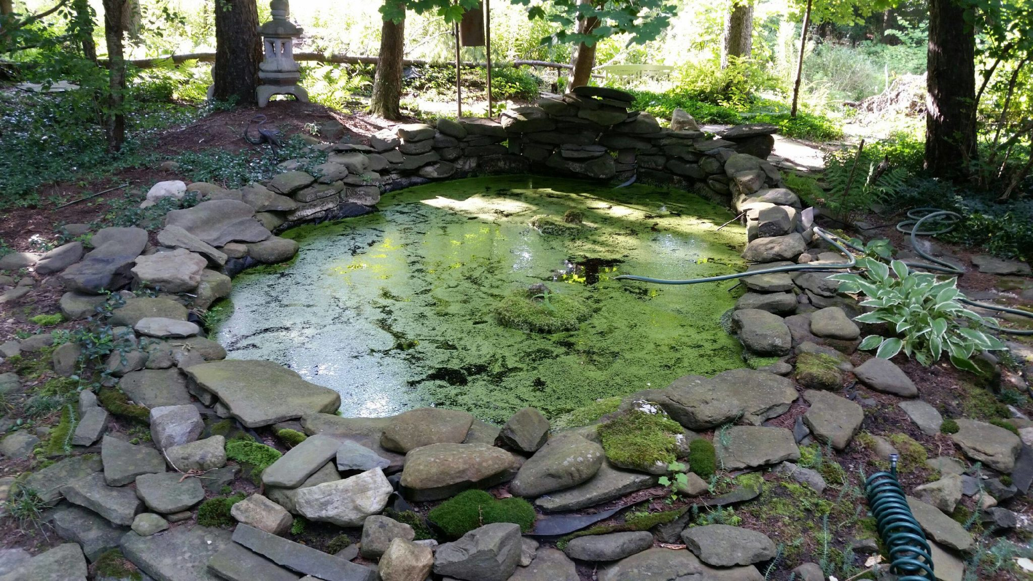Grassmaster Landscaping Pond Project