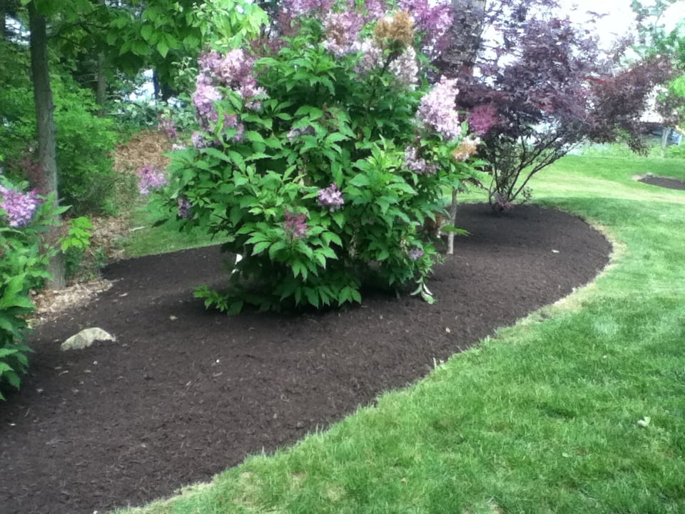 Grassmasters Landscaping Mulching Project 6