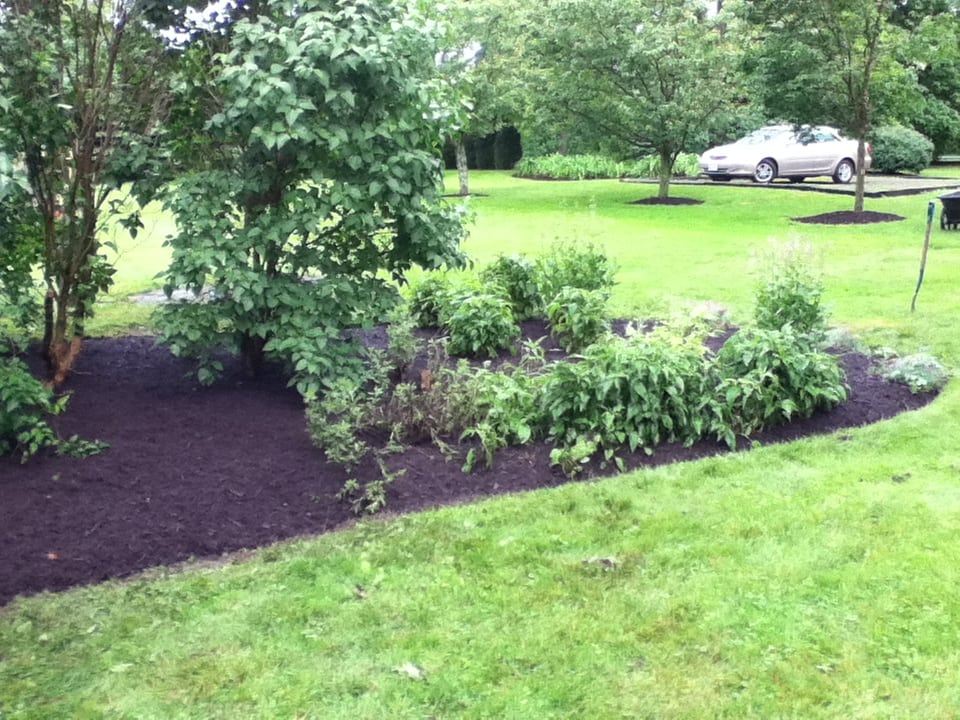 Grassmasters Landscaping Mulching Project 16