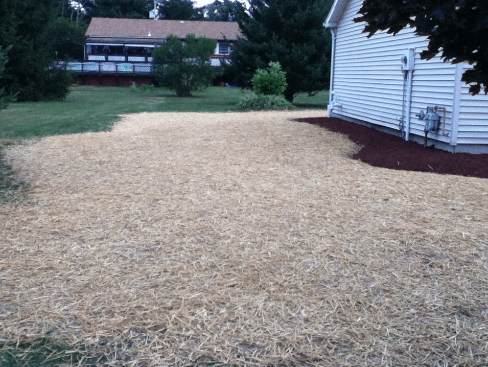 New-Lawn-Installation-Seed-and-Straw