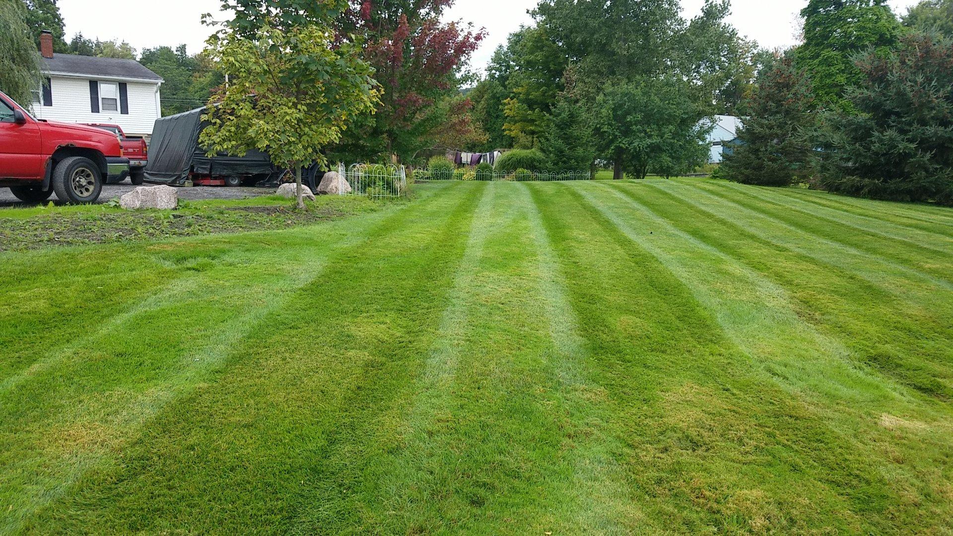 GrassMasters Landscaping Lawn Maintenance